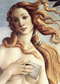 Venus uses herbaria lavender oatmeal soap