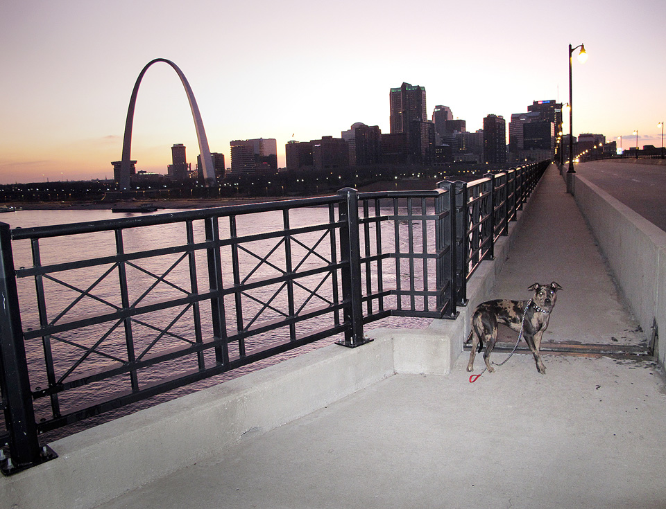 Eads Bridge, East St. Louis, Illinois