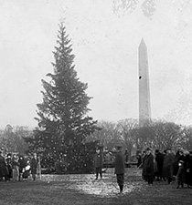The 1st Presidential Christmas tree