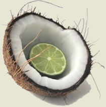 herbaria put the lime in the coconut