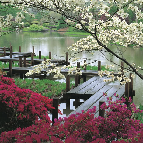 Missouri Botanical Garden, St. Louis, Missouri