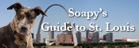 Soapy's guide to St. Louis