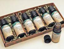 Herbaria Essential Oil Starter Kit