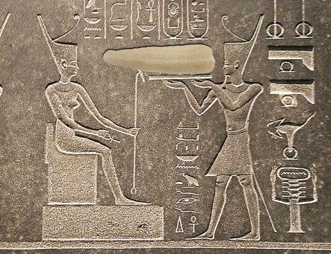 Egyptian Luffa