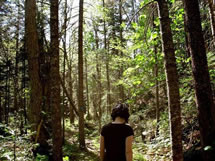 woman walking in Maine woods photo